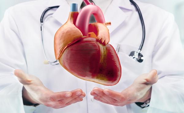 Fisioterapia cardíaca – ISBN: 978-84-494-5324-3
