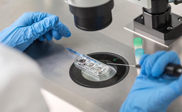 Técnicas avanzadas en embriología de reproducción humana asistida – ISBN: 978-84-494-5328-1